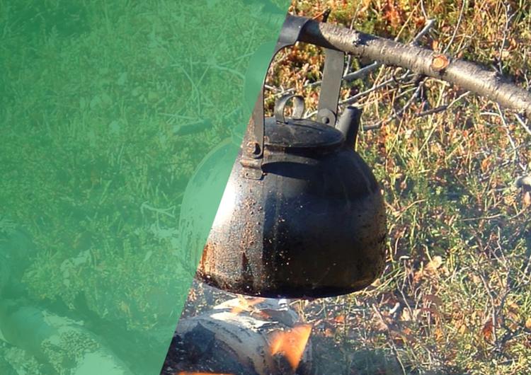 A pot on a fire